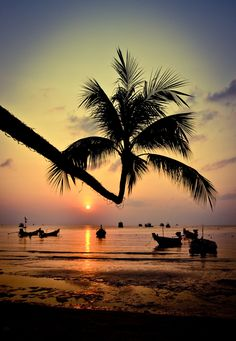 Koh Tao Beach Sunset, Thailand - year ago today stepped on to this beautiful place