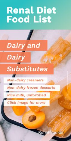 Dairy-free Food List for CKD Patients Who doesn't love ice cream and other frozen desserts? Having chronic kidney disease doesn't Dairy Free Food List, Dairy Free Recipes, Diet Recipes, Best Protein, High Protein Recipes, Protein Foods, Low Potassium Recipes, Kidney Recipes, Kidney Foods