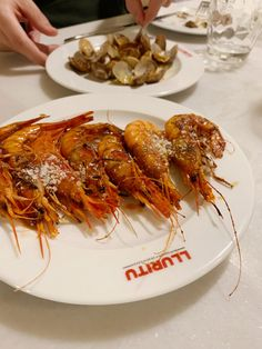 Lluritu2 - Le Cool Barcelona Fresco, Salsa Picante, Shrimp, Barcelona, Cool Stuff, Videos, Food, Spanish Omelette, Food Cakes