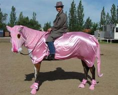 Costumes for Your Horse | The Horse Tailor Creates Costumes for Horses | Oddity Central ...