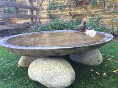 concrete bird bath cement bowl cm baths near me diy mold Garden Crafts, Garden Projects, Garden Art, Diy Crafts, Bird Bath Garden, Diy Bird Bath, Hanging Bird Bath, Hanging Basket, Back Gardens