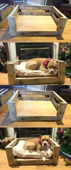 Awesome Pallet Dog Bed Palns #dogbed