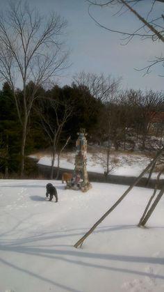 Zen, Snow, River, Garden, Outdoor, Outdoors, Garten, Outdoor Games, Lawn And Garden