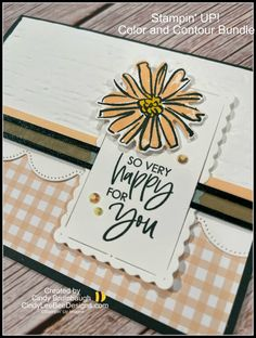 TIPS for the Stampin' UP! Color and Contour Bundle | Cindy Lee Bee Designs Color Contour, Bee Design, Embossing Folder, Natural Texture, Pansies, Stampin Up, Birthday Cards, Create, Tips