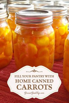 Take advantage of the seasonal harvests to stock you pantry shelves with home canned carrots and build you home food storage. If you don't grow your own carrots, consider purchasing in bulk at a local farmer's market when in season and preserve to enjoy all year.