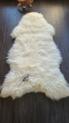 Giant Thick white British Sheepskin Rug Natural comfy,cozy, hair is very thick ! Natural Shapes, Natural Rug, Sheepskin Throw, No Photoshop, Tiny House Plans, Photo Retouching, Mold And Mildew, Kids Room, Things To Come