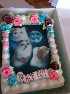 These cats are kind of scary, but I'd totally die if I had a cat birthday cake. @Chloe Turner