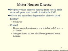Motor Neuron Dna And Neurons On Pinterest