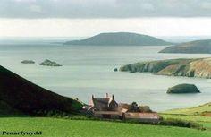 Places To Dog Walk In Gwynedd
