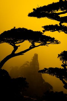 Yellow Mountain, China, by Maria Diez.