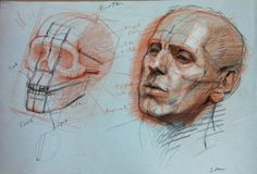 Anatomy drawing art: figure study, life drawing, portraits, perspective в 2 Drawing Heads, Life Drawing, Painting & Drawing, Anatomy Sketches, Art Sketches, Human Anatomy Drawing, Head Anatomy, Anatomy For Artists, Face Sketch