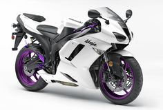 zx6r purple and white