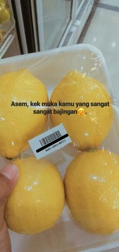 Food Quotes, Jokes Quotes, Daily Quotes, Qoutes, Funny Quotes, Quotes Lucu, Quotes Galau, Sabar Quotes, Funny Instagram Captions