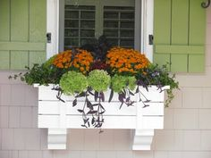Fall windows boxes are quaint and beautiful to look at. Spruce up your home decor from the outside in. #HomeDecor #FallHomeDecor