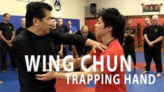 Sifu Francis Fong - Trapping Concept | FFIA Public Video - YouTube