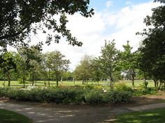 John Whitehead Park - An oasis of calm sponsored by White Star Cider and Marie Stopes International