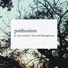 psithurism (n.) -- the sound of the wind through tress