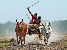Bangladesh Tourism: Best of Bangladesh - TripAdvisor