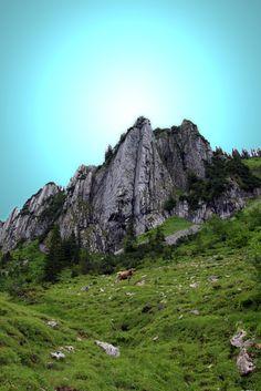 Wanderung Bezau, Bregenzerwald in Vorarlberg
