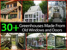 greenhouse from salvaged windows collection of greenhouse made of old windows greenhouse made out of recycled windows Small Greenhouse, Greenhouse Plans, Greenhouse Gardening, Old Window Greenhouse, Outdoor Greenhouse, Greenhouse Wedding, Recycled Windows, Old Windows, Windows And Doors