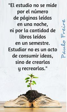 #Freire #Frase #Estudio