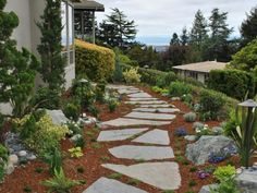 For a side yard on a hill in California, landscape designer  Ahmed Hassan , who has hosted HGTV and DIY Network shows, brought in mulch and stone pavers, instead of covering it with sod. Plants of various sizes soften the look of the space without blocking the views.