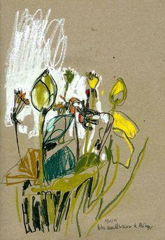 Inma Serrano: Semillas de loto