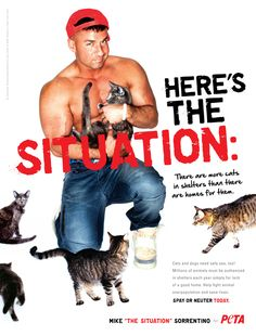 "#WTF Mike ""The Situation"" Sorrentino's PETA Campaign Makes No Sense At All"