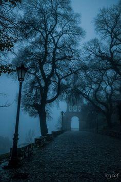 Ciclogénesis serrana by Juan Carlos Ordóñez Fernández on Gothic Aesthetic, Slytherin Aesthetic, Night Aesthetic, Blue Aesthetic, Dark Paradise, Dark Photography, Dark Forest, Dark Places, Dark Fantasy