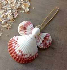 Calico Angel This Adorable Calico Seashell Angel is handmade here at Sea Things. This Angel is calico pink in color. All shells are natural in color. She is really very pre Seashell Ornaments, Seashell Art, Xmas Ornaments, Seashell Display, Sea Crafts, Angel Crafts, Food Crafts, Paper Crafts, Seashell Projects