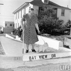 Now it's time to cross the street. Baby is on the case...  Mrs. Carolyn Swanson and her Persian cat, Baby, Los Angeles, 1947