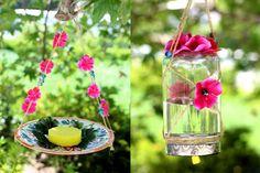 Butterfly feeders