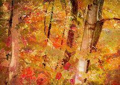 """Klimt's Forest"""" ...enhanced photographic print..."