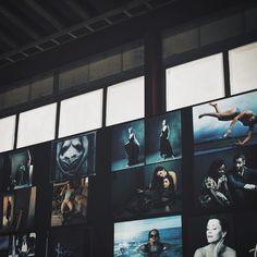 2月20日から3月13日まで東京東雲のTOLOT/heuristic SHINONOMEでアニーリーボヴィッツさんの写真展が開催されます入場無料  WOMEN: New Portraits  Annie Leibovitz  Tokyo Opening February 20 Free entrance to the exhibition Annie Leibovitz from WOMEN:New Portraits by cipher