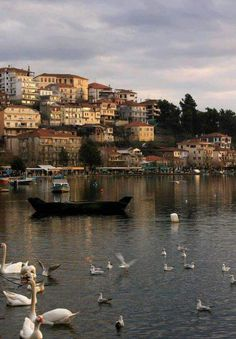 City by the lake. The beautiful Kastoria in Northern Greece. more with healing sounds: Places To Travel, Places To See, Travel Around The World, Around The Worlds, Myconos, Places In Greece, Greece Travel, Greek Islands, Nature Photos