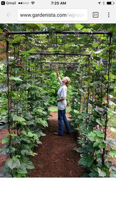 Creating Perfect Garden Designs Beautify Backyard
