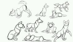 Puppy base