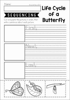 Sequencing unit. Includes differentiated worksheets and a pocket chart center activity. A fun way to introduce procedural writing!