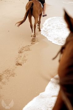 Riding horses on the beach...