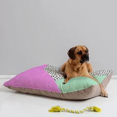 Allyson Johnson Spotted Modern Pet Bed | DENY Designs Home Accessories