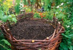 This is the compost bin? Composted Materials in Woven Bin in Garden or raised bed idea