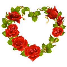 roses and cupid - Google Search