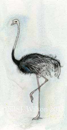 Feeling a little feathery  ORIGINAL Ostrich by AlmostAnAngel66, £120.00