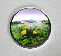Dandelion Cluster #2, 2010  Diorama viewed through 2 in. (5 cm) window.  11 x 14 x 8.75 in. (28 x 36 x 22 cm).    Styrene, acrylic, cast neoprene, cast wax,  hair, paper, polyurethane foam, wood, ash,   talc, starch, acrylite, vinyl film, copper, wood,  steel, lighting, BK7 glass.  PATRICK JACOBS  <  > return