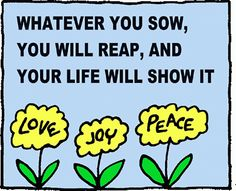 Whatever you sow, you will reap, and your life will show it.