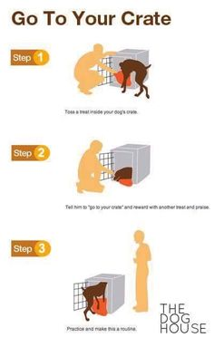 Teach your dog to Crate
