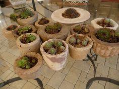 bepflanzte betongefäße