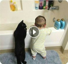 Watching funny baby cats is the hardest try not to laugh challenge. Baby cats are amazing pets because they are the cutest and most funny. It is funny and cu. Kittens Cutest, Cute Cats, Funny Cats, Funny Animals, Cute Animals, Animal Memes, Baby Animals, Curly Haired Cat, Obstetrics And Gynaecology