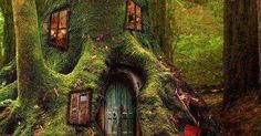 Just Pinned to Forests: Why write? To write. To make something. Claude Simon #amwriting https://t.co/MUZ6iu36GG http://ift.tt/2fDazrb
