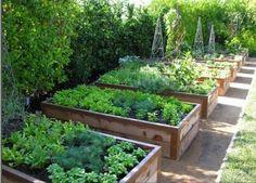 Urban Garden Design 20 Good Crops for a Potager Garden Diy Garden Bed, Garden Boxes, Raised Garden Beds, Raised Gardens, Vegetable Garden Tips, Potager Garden, Garden In The Woods, Edible Garden, Garden Planning
